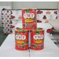 Heißer Verkauf Organische Safa Tomatenmark 2015 Neue Ernte Aus China Lieferant
