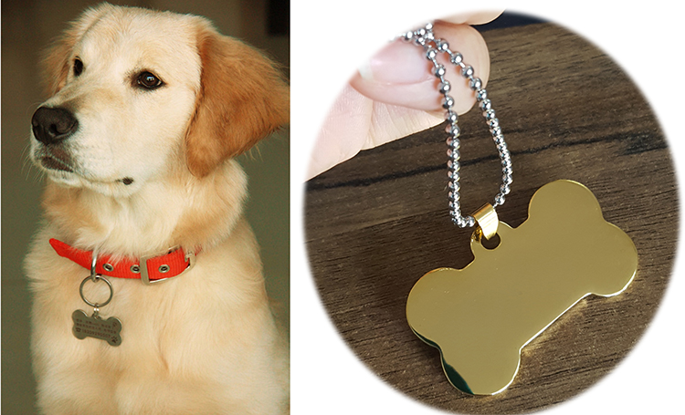 DETAIL dog neck tag