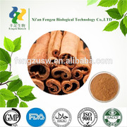 High quality food additive cinnamon