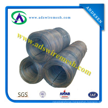 Black Annealed Wire/ Binding Wire (High quality and factory pice)