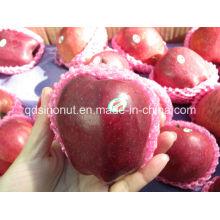 Китайское яблоко Huaniu (40/44)