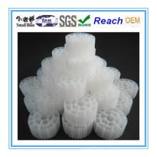Embalagem biológica da suspensão dos produtos do aquário