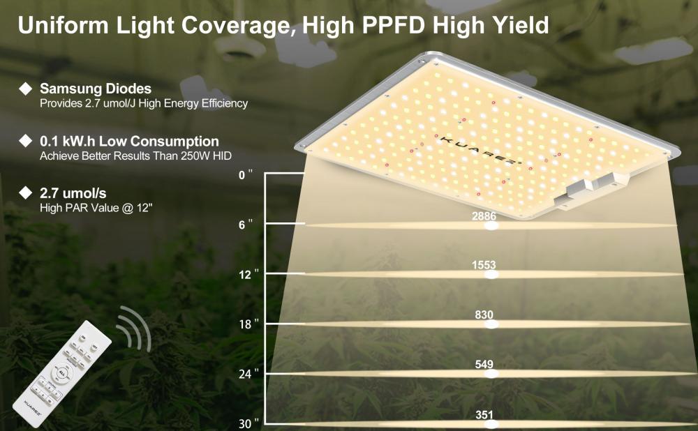 Best Control LED Grow Lights 100W