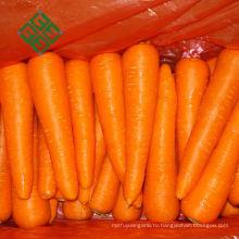 Самых продаваемых продуктов Китай моркови 2 кг овощей морковь
