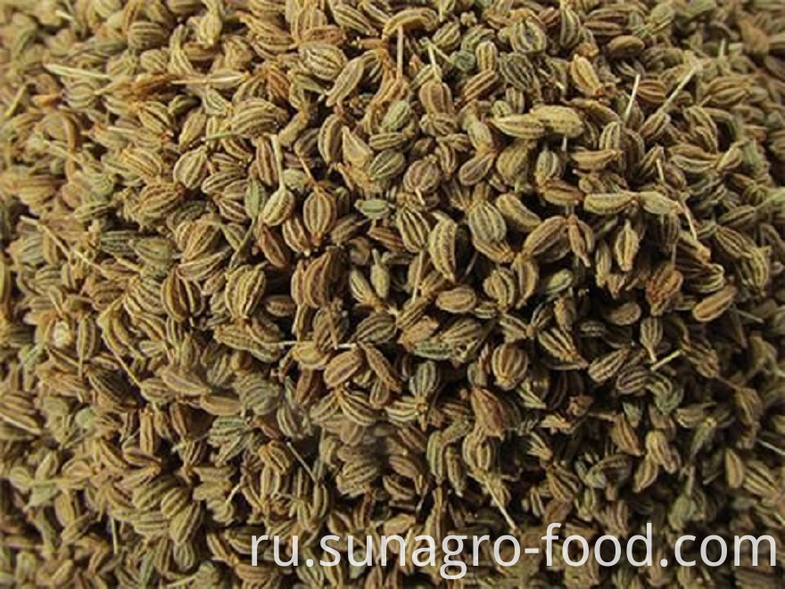 Pollution-Free Natural Dried Fennel