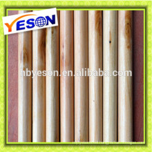 25mm Varnished mop stick/house cleaning wooden handle varnished/floor mop handle 22mm*1200mm