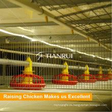 Tipo H Sistema de alimentación de la barrena de aves de corral de la jaula de pollos de engorde para las aves de corral