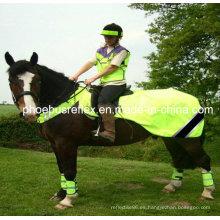 Chaleco reflectante de caballo / cubierta