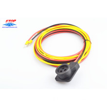 Molded power cord