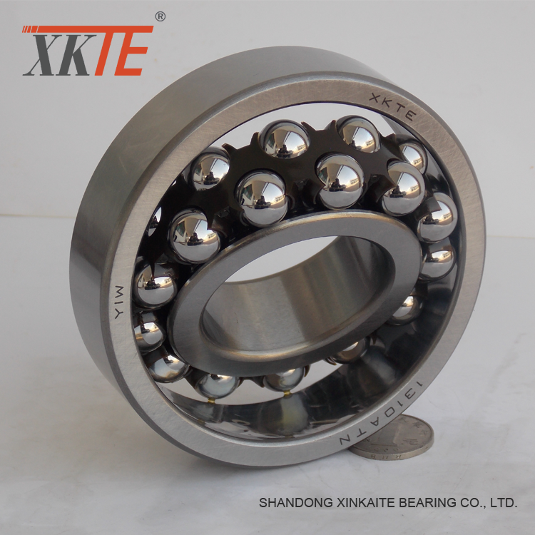 Nylon Cage Self Aligning Ball Bearing 1310atn