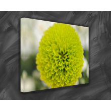 Foto Canvas ART Experts w Beveled Keilrahmen