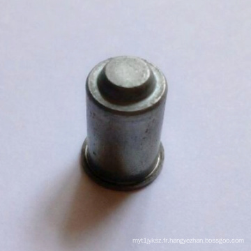 Pièces d'estampage de précision à la plaque électrolytique