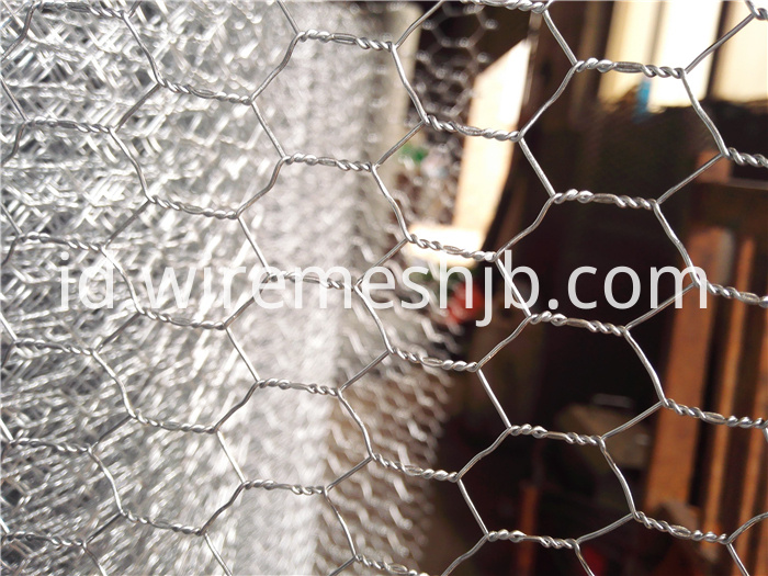 Hexagonal Wire Fence