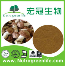 Top quality agaricus blazei murrill extract supplier