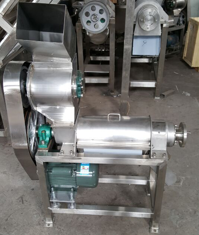 Stainless Steel Fruit Juice Machine