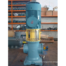 3GL Vertical Double Suction Three Screw Pump for Liquid