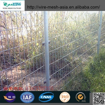 Hot Dipped Galvanized Wire Mesh Fence