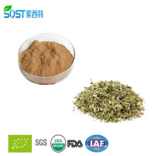 China Supplier New Product Damiana Leaf Extract 10:1