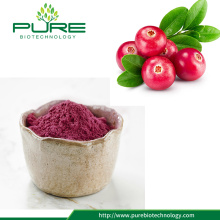 Anti-oxidant Frukttorkad Cranberry Extract Powder