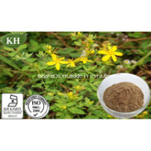 Pure Natural Forsythia Extract Ratio Extract 5: 1; 10: 1
