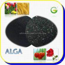 Algen-Extrakt-Dünger