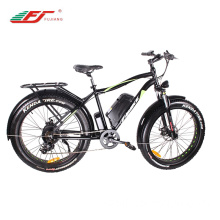 48v Fat Tyre Electric Bike
