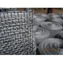 SS 316 Crimped dây vải
