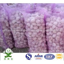 Chinese Garlic (normal white) New Crop 2016 Hot Sale
