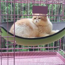 Heißer Verkauf Katze / Kätzchen Hund / Welpen Haustier Bett Liege Käfig Hängematte Haustier Schaukel Bett für Katze