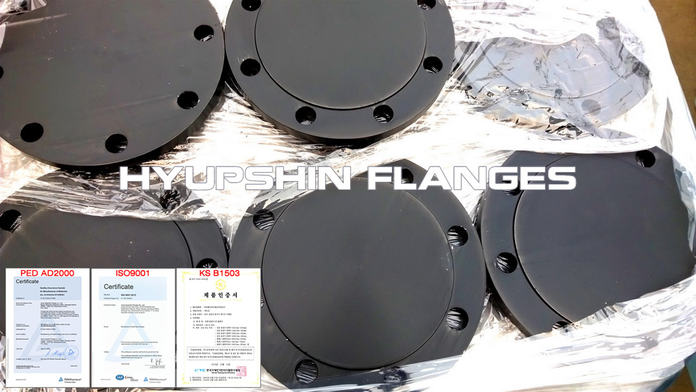 Hyupshin Flanges Blank Blind Rf Black