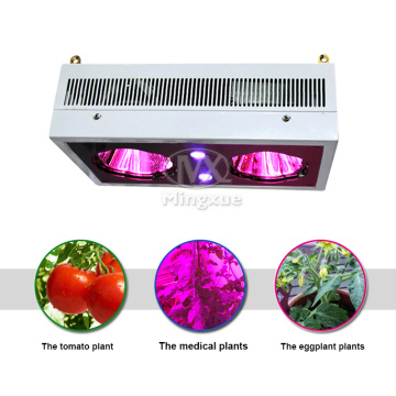 Planta médica Green Color LED Grow Light