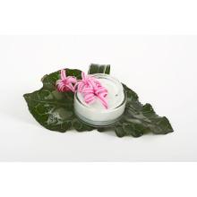 Ácido hialurónico (HA) Hidratante Cuidado de la piel Ácido hialurónico (HA)