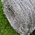 Hot sale Galvanized barbed wire