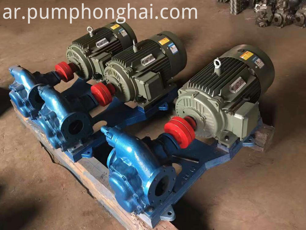 Electric Gear Oil Pump