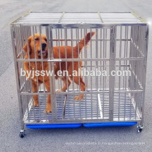 Cage de chien de barre d'acier inoxydable, caisse de chien, cage d'animal familier avec la grille en plastique