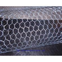 Un treillis métallique hexagonal de ping (usine de Chine)