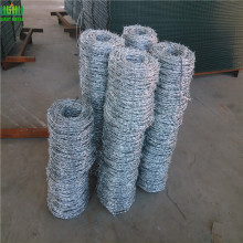Galvanized Twist Barbed Wire Usd for Protecting Pagar