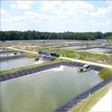 Geomembrana de HDPE de revestimiento de estanque de piscifactoría para agricultura