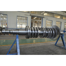 Axial Flow Reaction Turbine QNP
