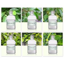 Óleo de eucalipto natural essencial de baixo preço e alta qualidade