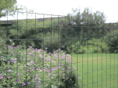 PVC Coated Euro Fence Roll