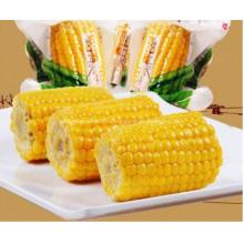 желтый кукурузный початок свежей