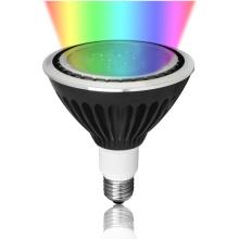 LED 20W/25W RGBW Waterproof IP67 PAR38