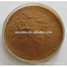 100% Natural Organic Herbal Extract Buckwheat Extract