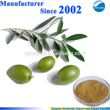 Hot selling high quality 100% natural 20%-40% Oleuropein,Olive Leaf Extract