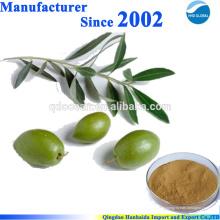 Venda quente de alta qualidade 100% natural 20% -40% Oleuropein, extrato de folha de oliveira