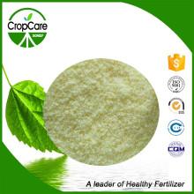 NPK Water Soluble Fertilizer 18-18-18 Manufacturer