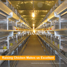 Tianrui Design Selling Chicken Layer Cage For Small Chicken