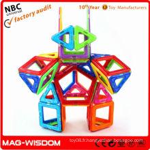 Ensemble magique de jouets magnétiques