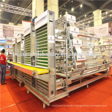 2014 hot-sell A type cheap bird cage for poultry equipment